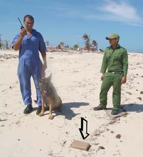Incautacion de drogas en costas cubanas.