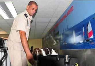 Cuba refuerza controles de Aduana para detectar operaciones de narcotráfico.