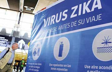 Zika-display.jpg