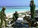 Informe: Cuba coopera con EEUU en casos judiciales por narcotráfico